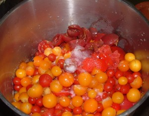coulis tomate09_redimensionner