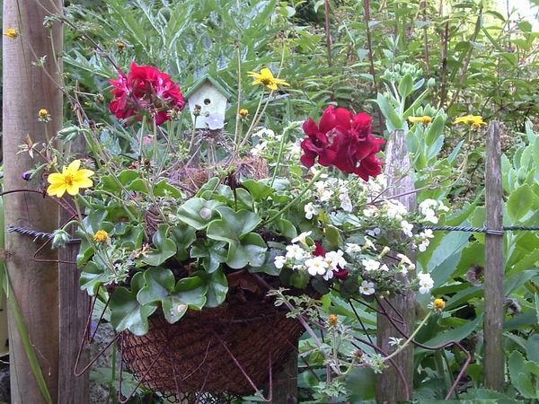 friteuse jardiniere