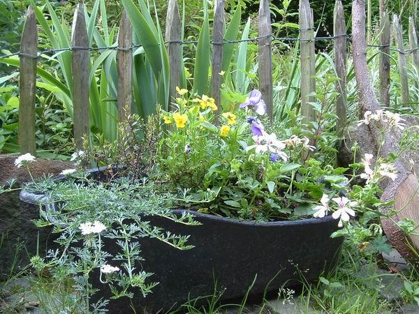 charbonniere jardiniere