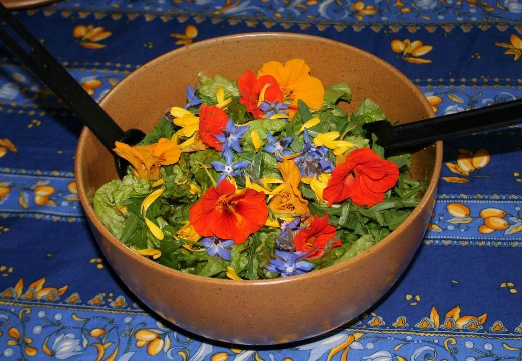 Redimensionnement de Redimensionnement de plat salade fleurs
